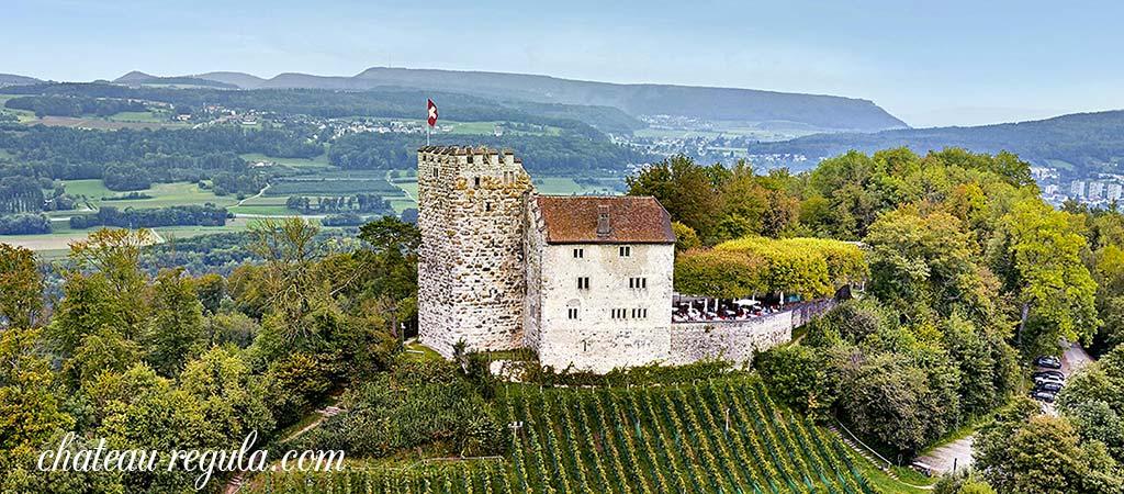 Chateau Le Luc Regula